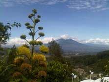 View Pegunungan Dari Villa Boenda Moelia